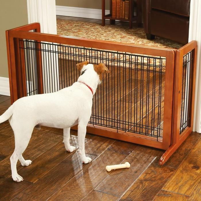 Top Five Best Baby Gates For Dogs